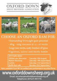 Oxford Down Sheep Breeders 2019_Page_1.jpeg