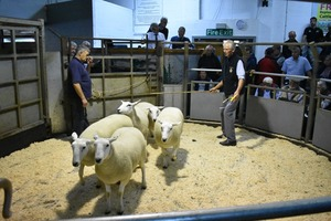 Ruthin 2018 - HM Wells sells 3rd prize shearling ewes for £155.JPG
