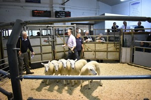 Ruthin 2018 - Hamish Goldie sells shearling ewes to £210.JPG