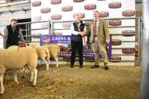 Brecon 2018 - Auctioneer Chris Jones presents Helen Wells with 1st prize shearling ewes.JPG