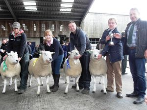 Ballymena 2015 - The winning line up of rams 1st to 4th with judge Peter Shields.jpg