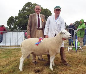 1st Prize Aged Ram and Overall Champion Lleyn with Judge Vernon Jones.JPG