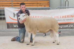 Lot 77 from B Walling sold for 2200 gns.jpg