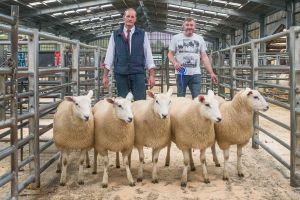 First prize pen of ewe lambs - J Morton sold for £300.jpg